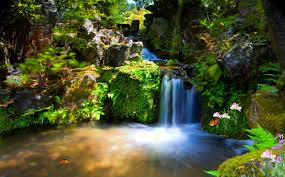 free animated nature screensavers. Delighful Nature On Free Animated Nature Screensavers E