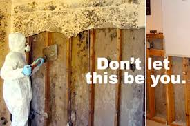 How To Get Rid Of Black Mold In Basement Best Of How Do You Rid Of Mold In Basement