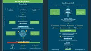 Patient Assessment 2019 Limmer Education Llc