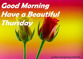 Thursday Good Morning Quotes Best of Good Morning Thursday Images With Beautiful Quotes