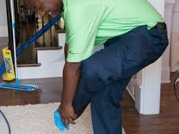 zerorez carpet cleaning columbia sc