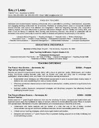Professional Resume Writers Chicago 21 Resume Services Chicago New