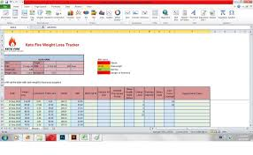 Entry 2 By Tarekfayyad For Design A Weight Loss Tracking Excel