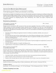 Billing And Collections Resume Sample Unique Retail Store Resume