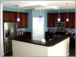 What Color To Paint Kitchen With Dark Cabinets Best Decorating Design