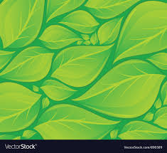 Green Leaves Background Texture