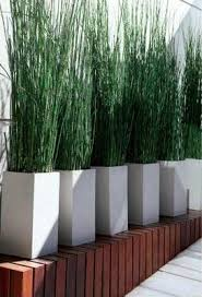 Best 25+ Balcony privacy ideas on Pinterest | Balcony curtains, Deck privacy  ideas using plants and Balcony privacy screen