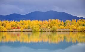 orange leaf reflections in a lake