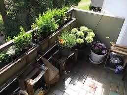 Tolle Idee F R Eine Gelungene Balkonbepflanzung Alte Obstkisten Sichtschutzbepflanzung