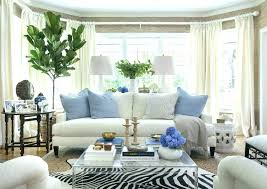 zebra print rug living room blue animal print rug animal rugs for living room decorating with hides blue and white leopard furniture row sofa mart