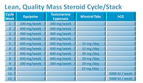 bodybuilding steroid cycles for mass