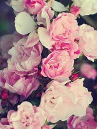 Rose Gold Flower Wallpaper - Welcome To ...