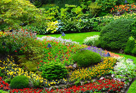 Image result for landscape pics