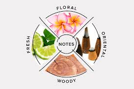 Know Your Perfume Fragrance Classification And Categories