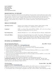 Examples Of Summaries For Resumes Example Of Summary In Resume Resume Creator Simple Source