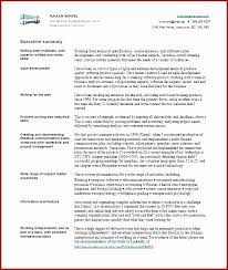 How To Create An Executive Summary In Word Executive Summary Template For Proposal Best Of 42 Inspirational