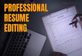 Professional Resume Editing Cheap Fast Resumeperk Com