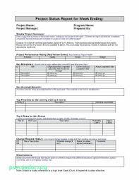 Staff Report Stunning Staff Progress Report Template New Free Sample Project Status Report