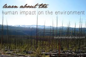 human impact on the environment sustainable baby steps