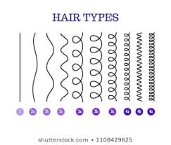 Curly Type Images Stock Photos Vectors Shutterstock