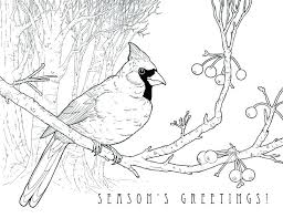 Bird Coloring Page X Bird Colouring Pages Pdf Homelandsecuritynews