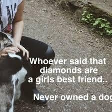 Sprüche Hunde Englisch Directdrukken
