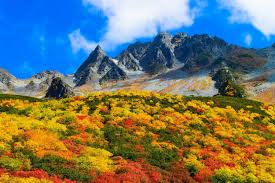 Fall Mountain Shrubs Clouds Blue Yellow Green Red