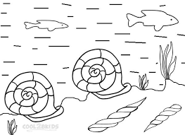 Small Picture Printable Seashell Coloring Pages For Kids Cool2bKids