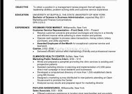 How To Write A Sales Resume Blank Order Form Template Rent Receipt