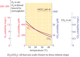 Co2 To O2 Conversion Chart What Are Environmental O2 And Co2 Concentrations
