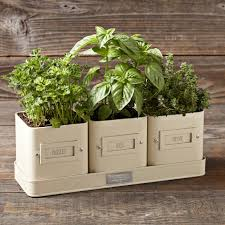 12MAR15 | Williams-Sonoma | Herb Pot with Tray | $29.95