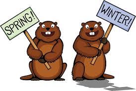 Image result for groundhog clip art