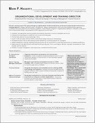 Summary In A Resume Example Resume Summaries Luxury Sample Good ...