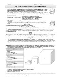 Ap Biology Surface Area To Volume Worksheet - ap biology surface ...