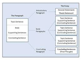 types of essay college homework help  types of essay