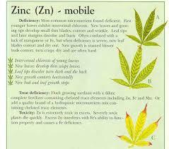 Cannabis Leaf Nutrient Deficiency Chart Bedowntowndaytona Com