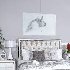 large white grey horse tempered glass