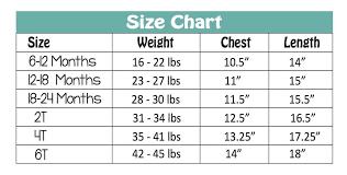 Preschool Weight Chart Hello Preschool Shirt Back To School Clothes For Girls 1st Day Of School Photo Prop 307