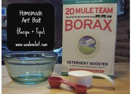 borax for ant control. Interesting For Images Of Ant Control Using Borax Intended For