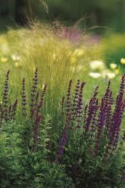 Small Picture Top 25 best Garden design magazine ideas on Pinterest