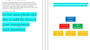 Youtube Organizational Chart Business Plans Ional Plan Example In Sample Pdf