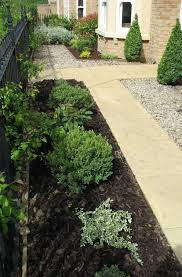 Small Picture Easy Plants for a Front Garden Karen Tizzard Garden Design
