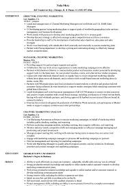 Channel Marketing Resume Samples Velvet Jobs