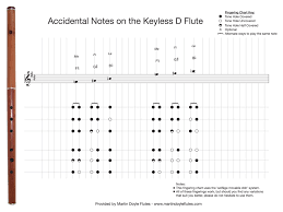 Fingering Charts For Keyless D Flutes Martin Doyle Flutes