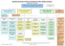 United Nations Organizational Chart Organizational Structure Of Unodc