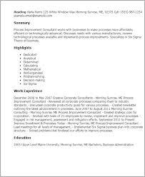 process improvement resumes professional process improvement consultant templates to showcase