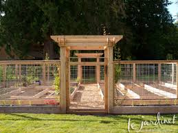 vegetable garden fence the interior designs less parsnips