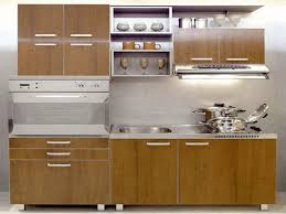single kitchen cabinet. Kitchen, Tiny Kitchen Design Dishes And Appliances Black Wooden Cabinet Single Bowl Sink Electronic Stove