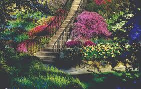 Resultado de imagem para belos jardins do mundo