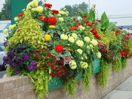 container garden design. Airy And Wispy Container Garden Design